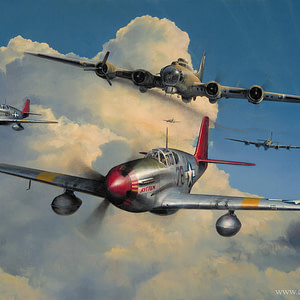 Red Tail Escort